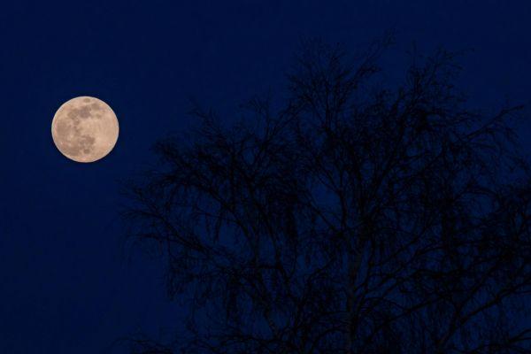 lune-insta-43ED52380-8472-B2DC-17AE-22CCBFF9EBFB.jpg