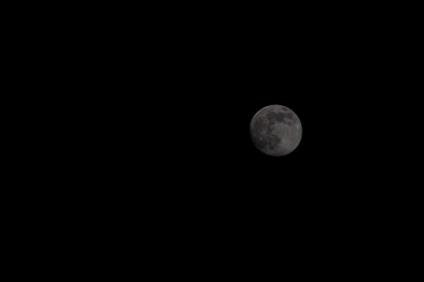 lune5-6-7-avril2020-2AE078E5C-7E0A-985E-4278-9BE50C56AC46.jpg
